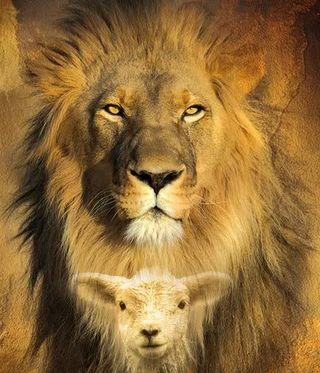 Lion-lamb-big1a