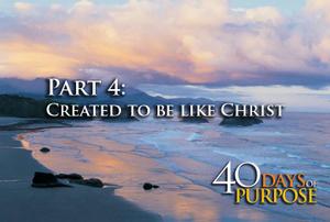 40_days_part4